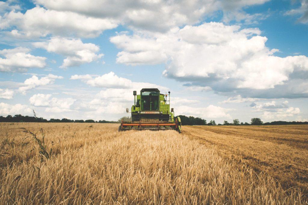 farm field being plowed