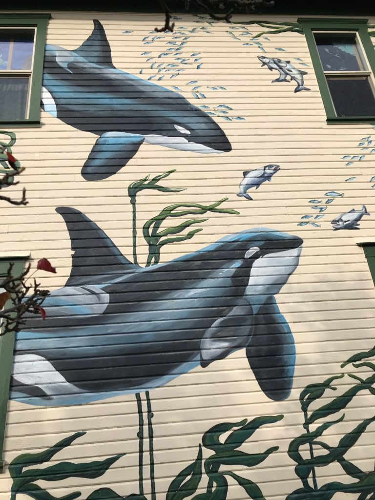 """outside of the Whale Museum, painted with orca whales, kelp """"trees"""", and schools of fish"""