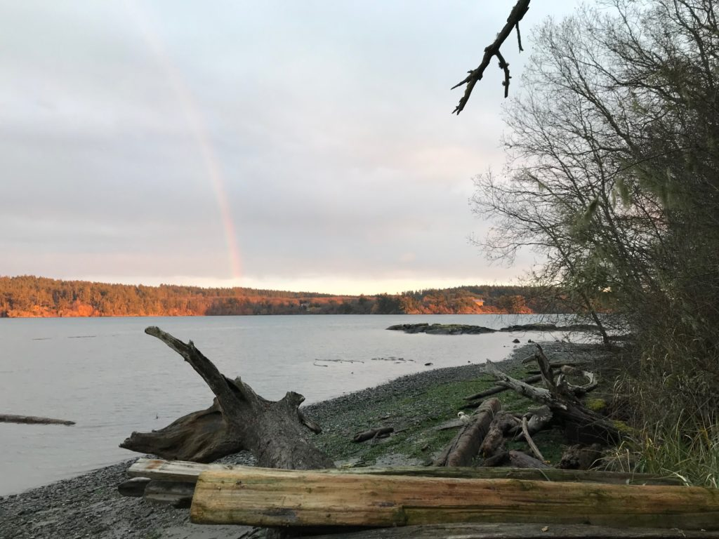 a rainbow pierces the background across a small bay; a rocky beach and several logs and trees in the foreground